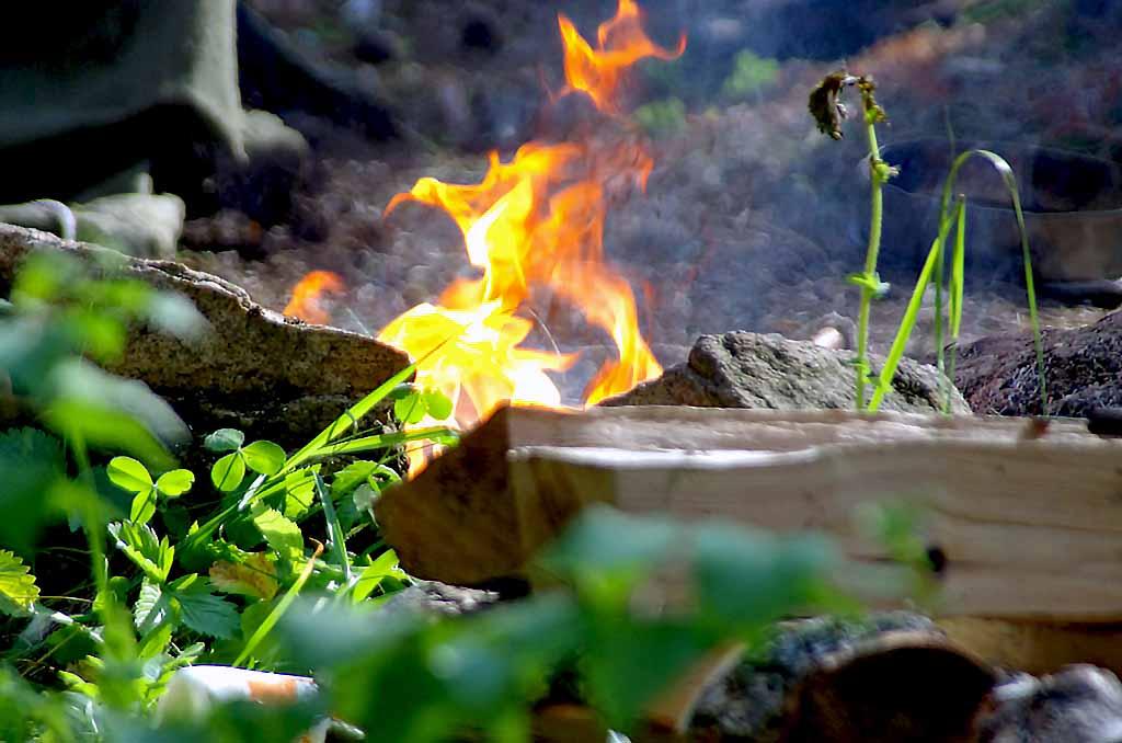 Как сообщили агентству «Урал-пресс-информ» в ГУ лесами по Челябинской области, по два возгорания