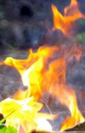 За минувшие сутки на Южном Урале ликвидировано два лесных пожара в Карталинском лесничестве, в то