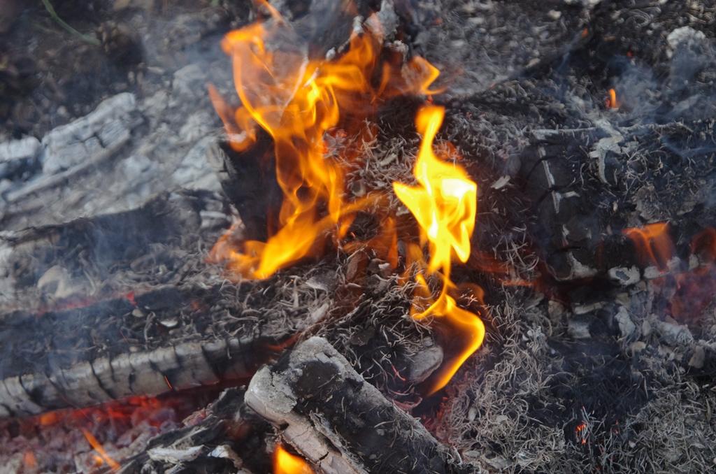 По два возгорания произошло на территориях Октябрьского (3,3 гектара) и Чебаркульского (4,5 гекта