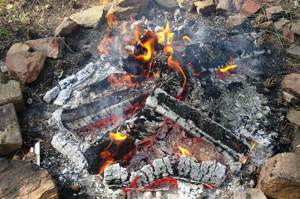 За минувшие выходные на территории семи лесничеств Челябинской области ликвидировано 18 лесных по