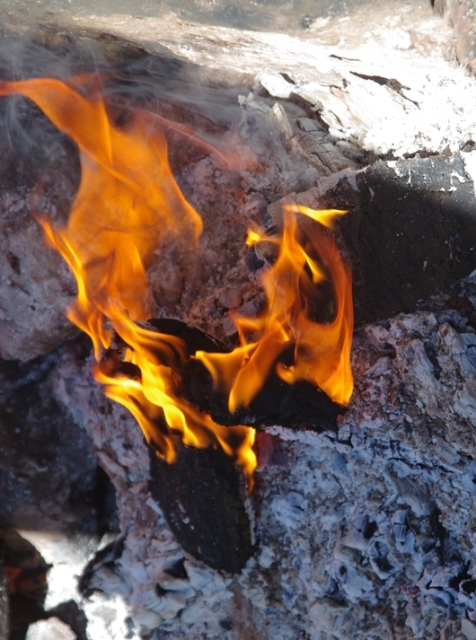 За минувшие майские праздники на Южном Урале ликвидировано 36 лесных пожаров на площади 900 гекта