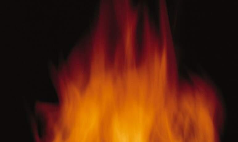 В Миассе (Челябинская область) в приюте для животных случился пожар.По предварительной инфо