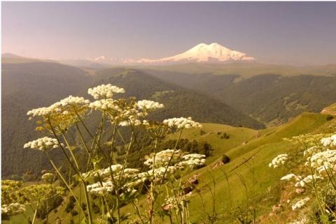 Сказочный Домбай: чем заняться на горном курорте