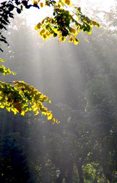 В предстоящие выходные, 5 и 6 сентября, в Челябинской области ожидается теплая погода в дневные ч