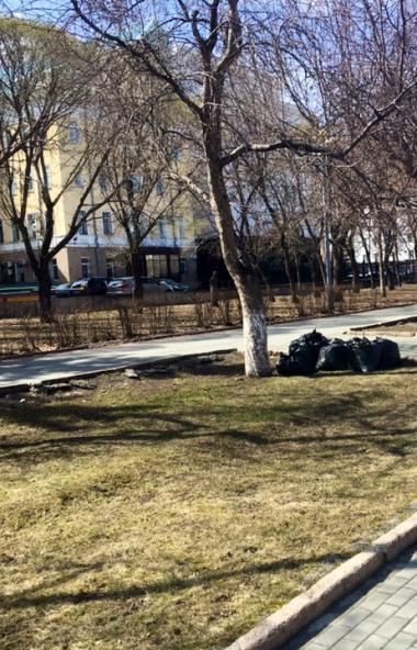 В Челябинске будут установлены новые урны и покрашены старые. Такое поручение главы южноуральской