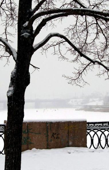 Школьники Челябинской области сегодня утром, 20 ноября, несмотря на морозы, отправились на заняти