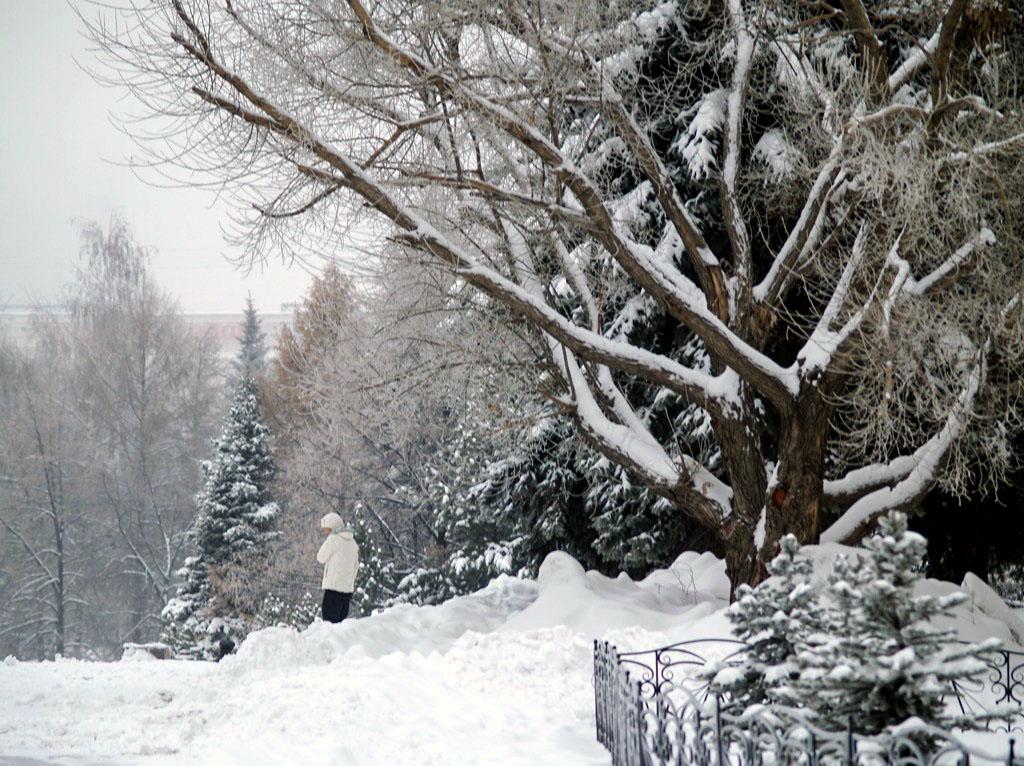 Как сообщили агентству «Урал-пресс-информ» в Челябинском Гидрометцентре, метеоусловия, способству