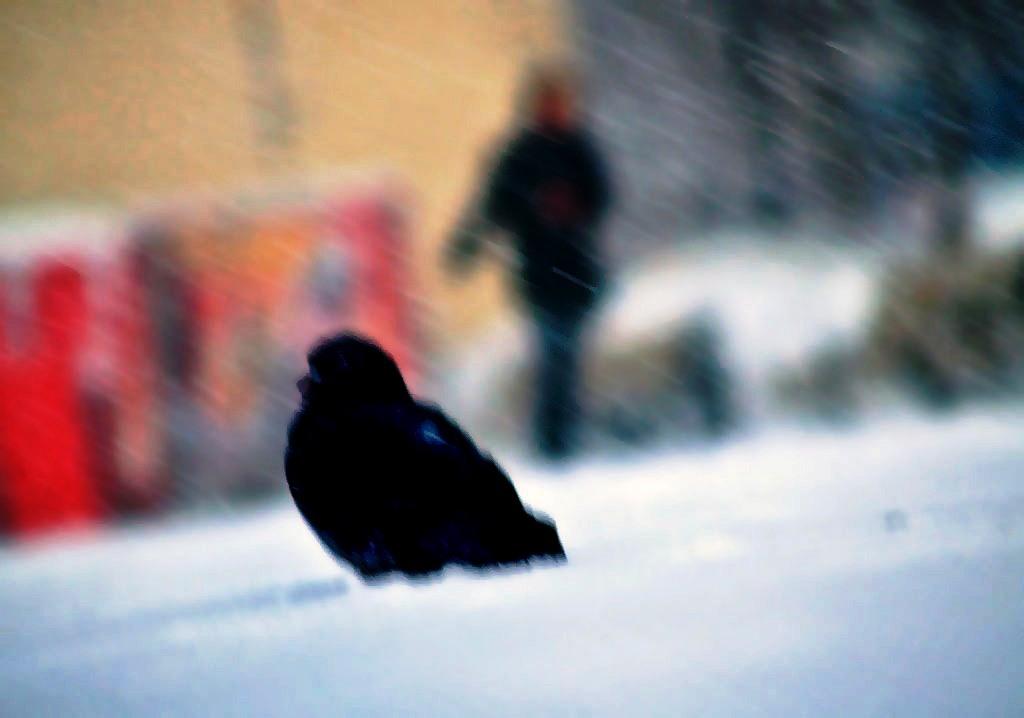 Морозы, которые пришли в Челябинскую область, задержатся в регионе и на выходные. Как сооб
