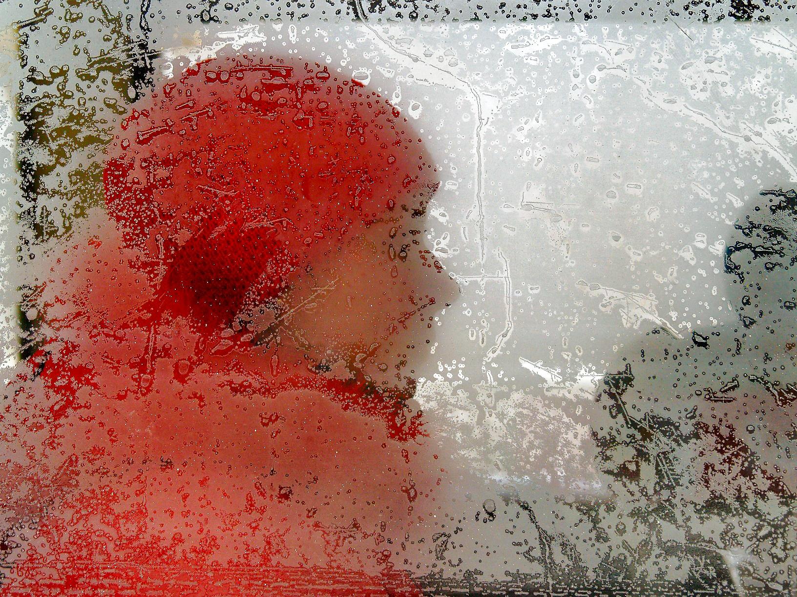 Сретенские морозы, которые бывают 15 февраля, в этом году обошли стороной Челябинскую область. Си