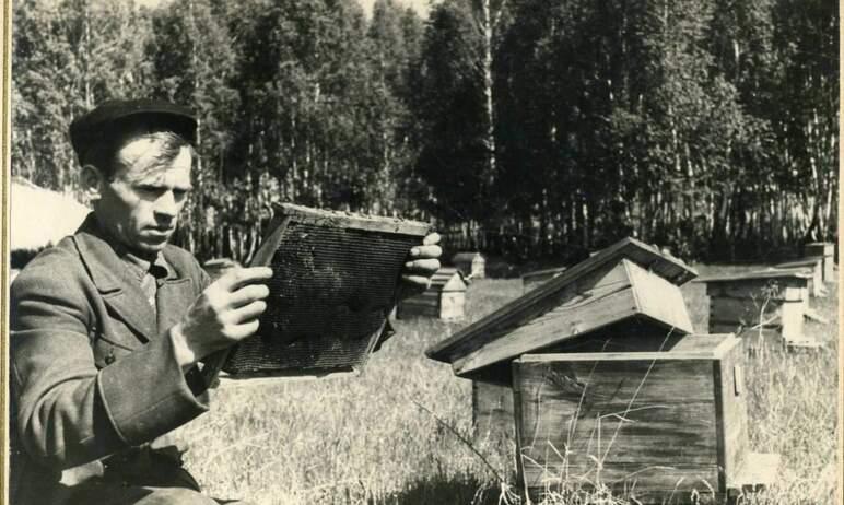 Завтра, 14-го августа, -Медовый Спас. В этот день в России чествуют пчеловодов и их непрост