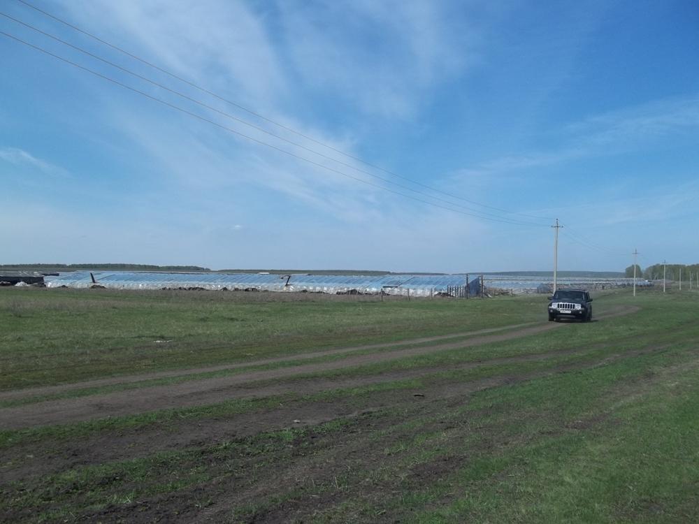 В Аргаяшском районе, как и во многих сельских территориях Челябинской области уже привычн