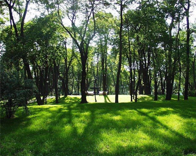 По словам Сергея Давыдова, в Ленинском районе нет ни одного парка или сквера. В то же время 29 ге