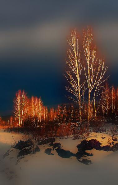В четверг, 12 декабря, в Челябинской области ожидается облачная погода с прояснениями, пройдет мо