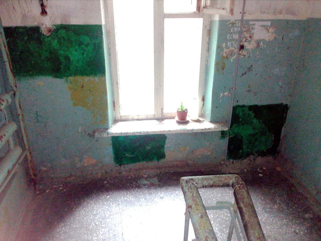 Жители одного из домов Металлургического района Челябинска пребывают в состоянии шока. В подъезда