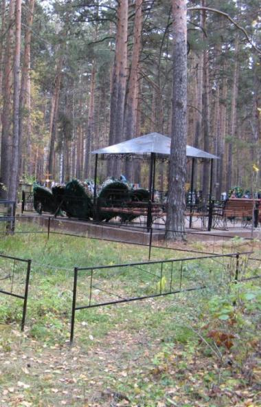 Известный политолог Александр Подопригора назвал земельный участок, предлагаемый под строительств