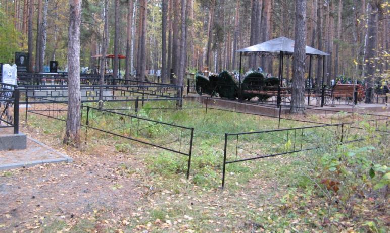 Митрофановское кладбище в Челябинске незаконно захватило часть территории Городского бора, находя