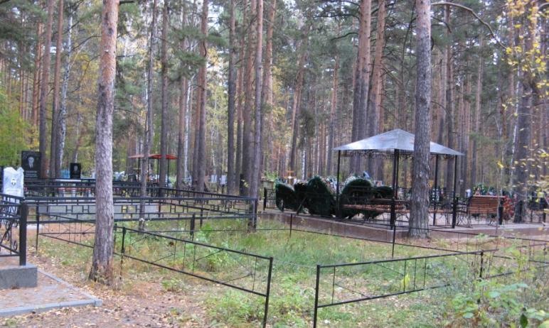 Глава Челябинска Наталья Котова распорядилась как можно скорее привести в порядок городские кладб