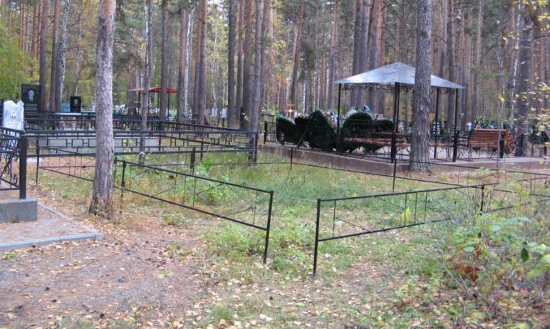 Челябинские кладбища до сих пор не очистили от мусора. Работы по их очистке к настоящему моменту
