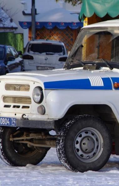 Кыштымский городской суд вынес приговор по уголовному делу в отношении двух братьев, которые приз