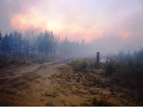 Фермеры и индивидуальные предприниматели Челябинской области, принимающие участие в тушении ландш