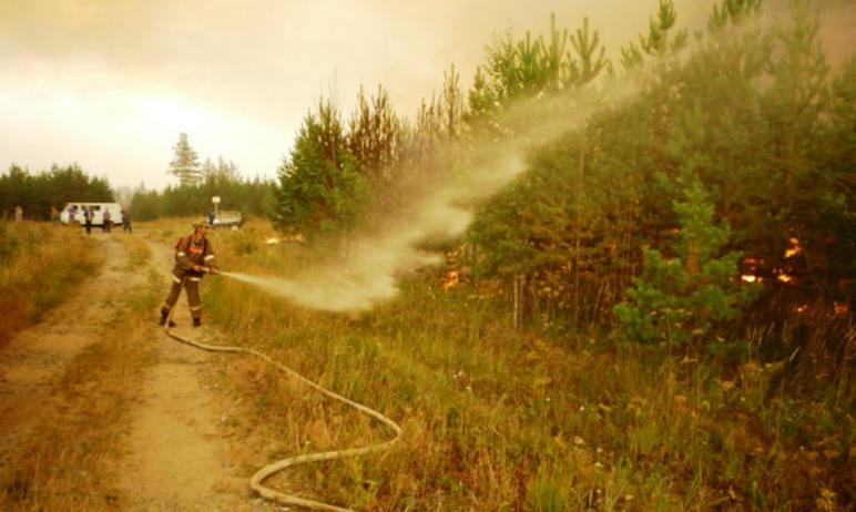 Пожарные продолжают бороться с огнем, который охватил юг Челябинской области. В пятницу, девятого