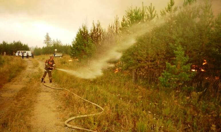 Крупный лесной пожар тушат на территории Пластовского муниципального района (Челябинская область)