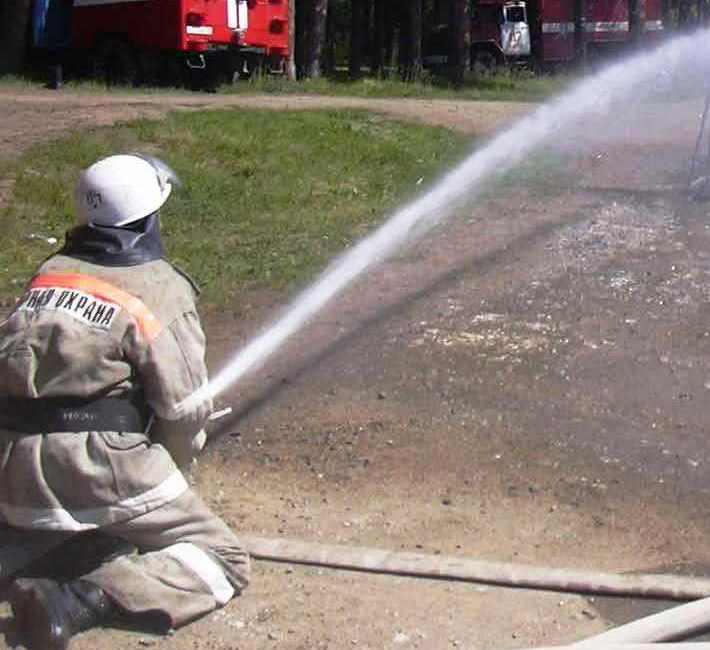 Виновники крупного лесного пожара, который произошел в Сосновском районе до сих пор не найдены. О