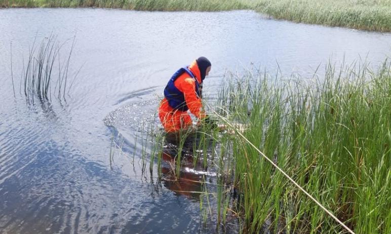 В пригороде города Троицка (Челябинская область) утонул 53-летний рыбак. О трагедии сообщили в по