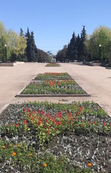 Бульвар Славы в Челябинске превратился в большой цветник.