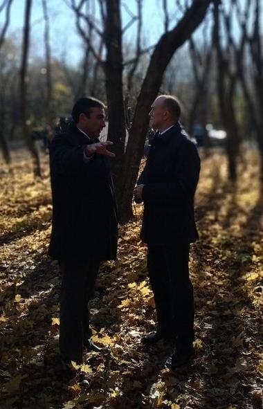 В челябинском парке «Плодушка» в настоящее время ведется ручная расчистка яблоневого сада от поро