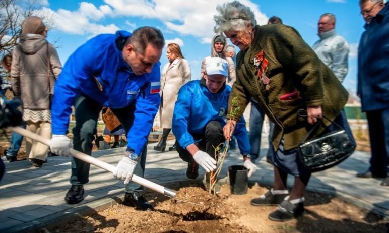 Челябинская область вновь примет участие в международной акции «Сад памяти». Генеральным партнеро