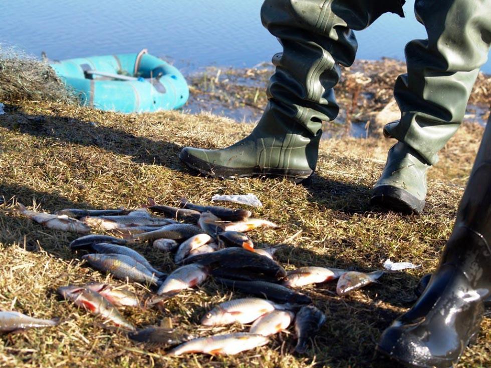 Как сообщает пресс-служба Министерства по радиационной и экологической безопасности Челябинской о
