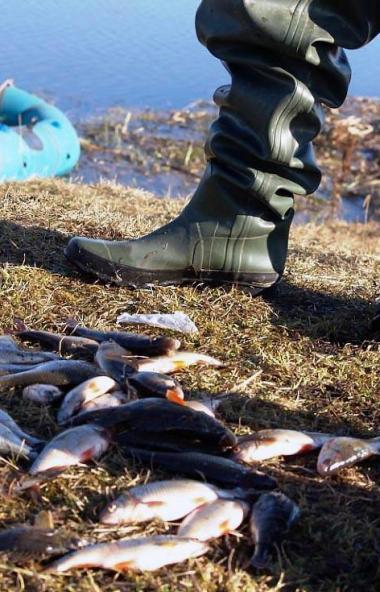Рыбакам-любителям не разрешат использовать это орудие лова, несмотря на то, что ранее такое разви