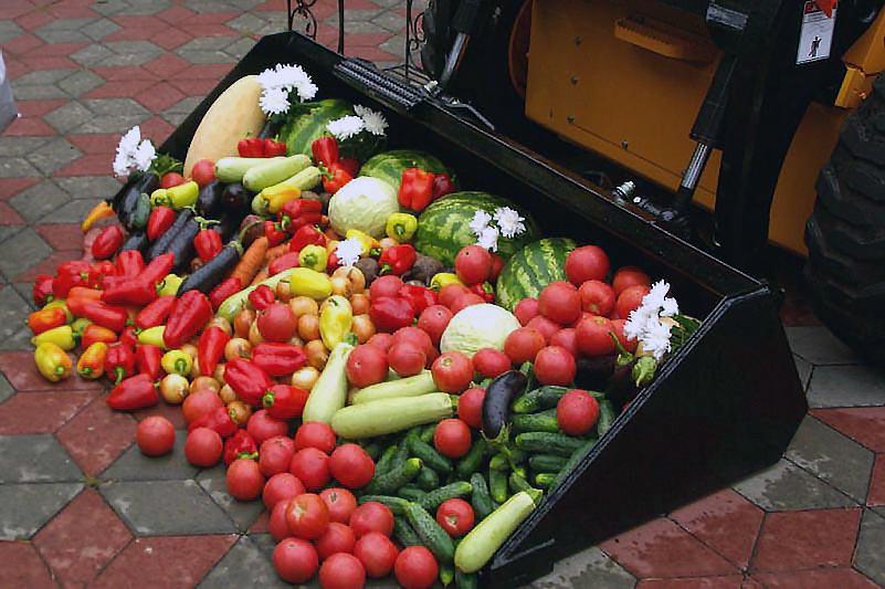 «На сегодняшний день торговая надбавка в сетевых компаниях на продукты питания, в том числе п