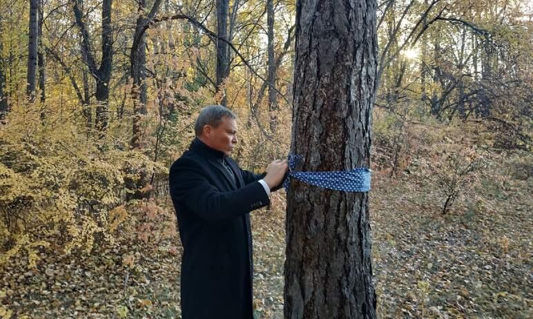Вчера, первого октября, Копейск (Челябинская область) проводил в последний путь Анну Викалюк, нед