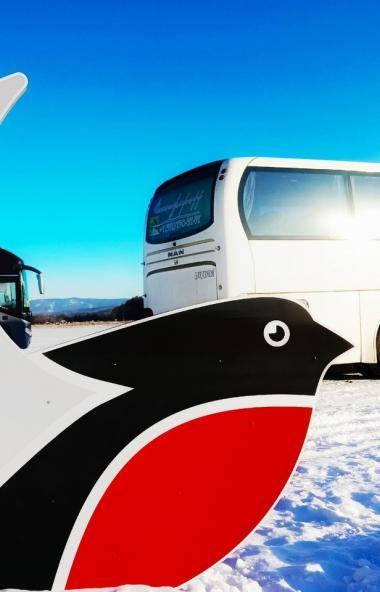 Максимально удобное расписание мультимодального маршрута «Снегирь» на новогодние праздники позвол
