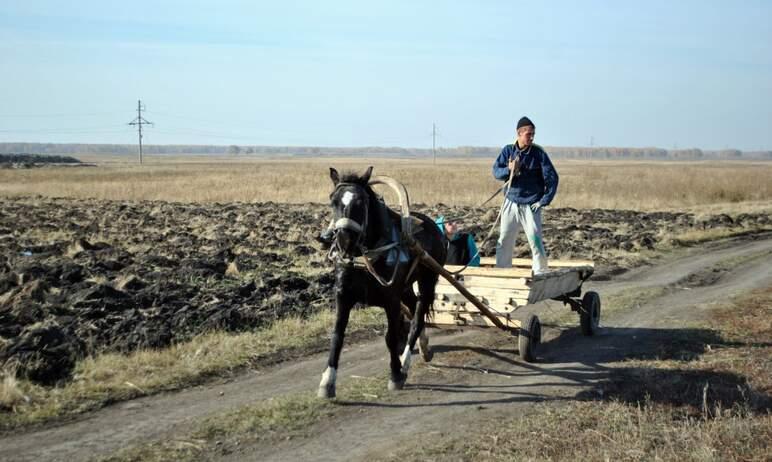 В Челябинской области двукратное снижение ставки единого сельскохозяйственного налога, установлен