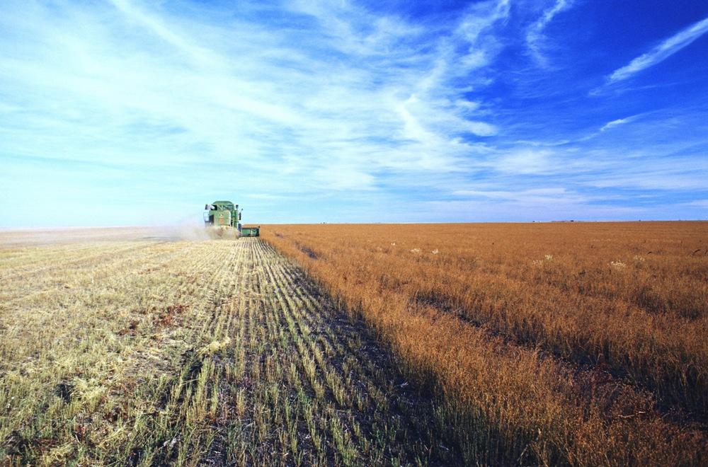 Отраслевой конкурс в агропромышленной отрасли станет площадкой, где соберутся специалисты по корп