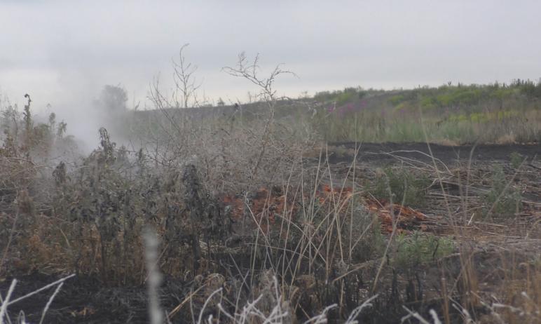 Жители копейского поселка Старокамышинск (Челябинская область) снова жалуются на удушливый запах