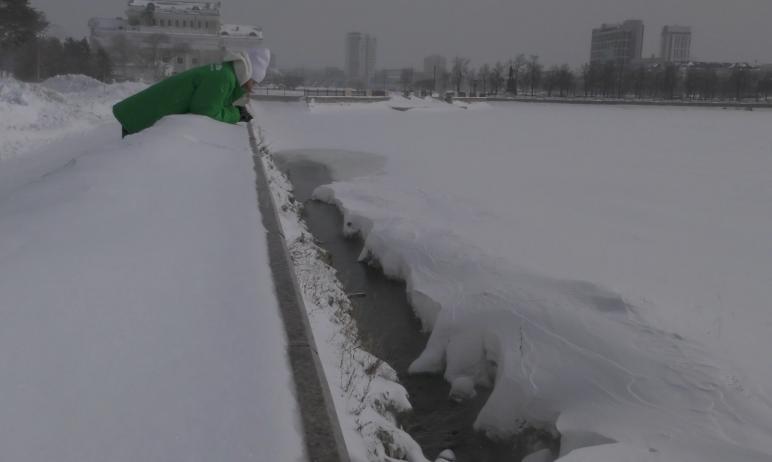 Общественная организация «АнтиСМОГ» провела исследование реки Миасс в черте города Челябинска на
