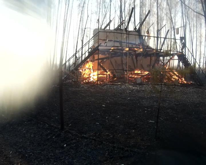 В Челябинске, который, как и всю область, объяли пожары, загорелся СНТ «Луч». Сообщение о пожаре
