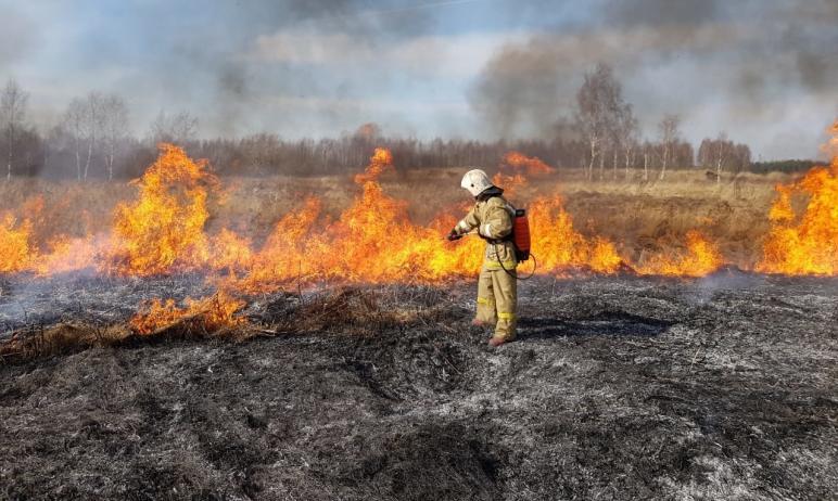 В Челябинской области пожарные зафиксировали первые случаи горения сухой травы и камыша. Так, соо