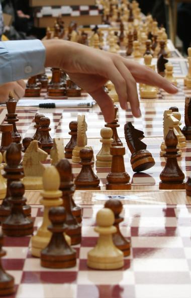 Российская шахматная федерация выразила благодарность генеральному директору агрохолдинга «Равис»