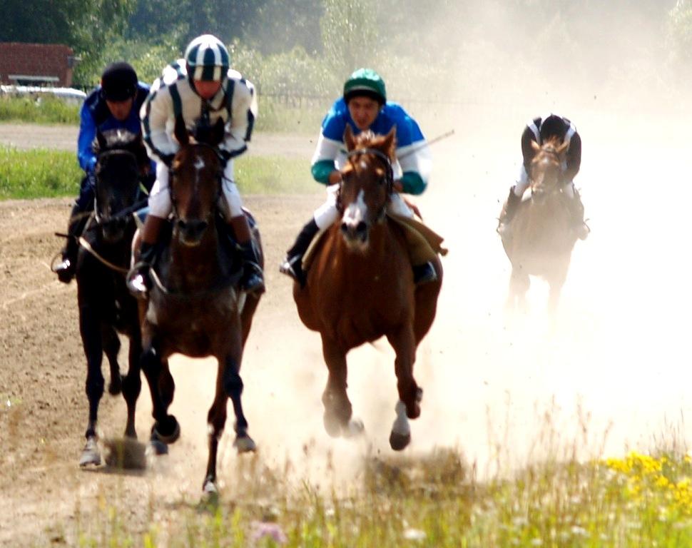 На днях руководство конно-спортивного комплекса «Рифей» провело с тренерским и обслуживающим перс
