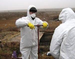Специалисты управления Россельхознадзора по Челябинской области закончили проверку скотомогильник