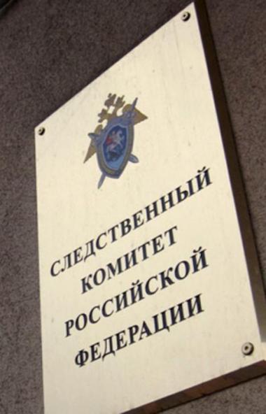 Председатель следственного комитета РФ Александр Бастрыкин поручил руководству СУ СКР по Челябинс