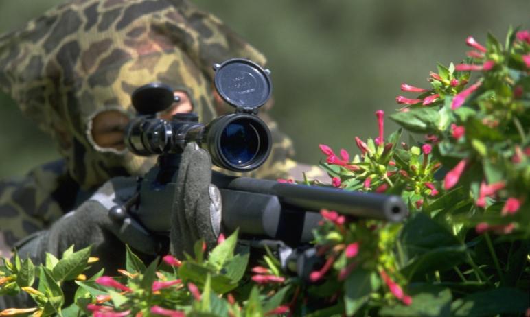 На прошлой неделе, 22 декабря, Госдумой РФ был принят законопроект, который позволяет отстреливат