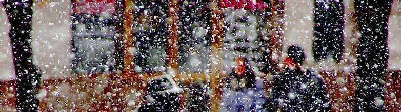 Циклон принесет в Челябинскую областьусиление ветра, снегопады и последующее потепление.