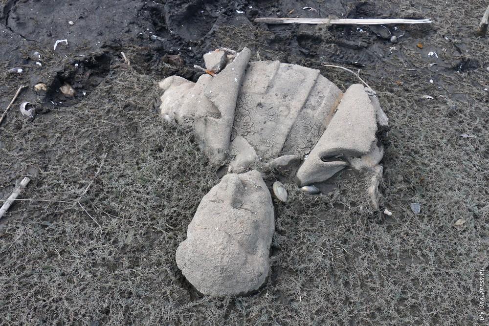 Продолжают кипеть страсти в южноуральской Кусе вокруг найденных в начале августа в пруду обломков