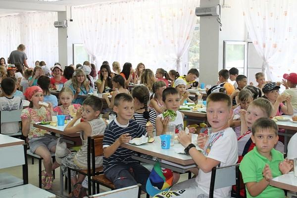 Недавняя история с массовым пищевым отравлением детей в санаторно-лесной школе имени Ю. А. Гагари